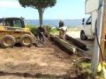 excavation-06.jpg
